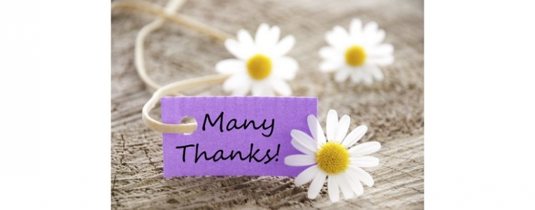 Many thanks for your gift daisies